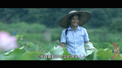 江西·定南旅游招商宣传片